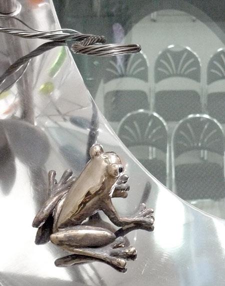 TAYS-sammakko