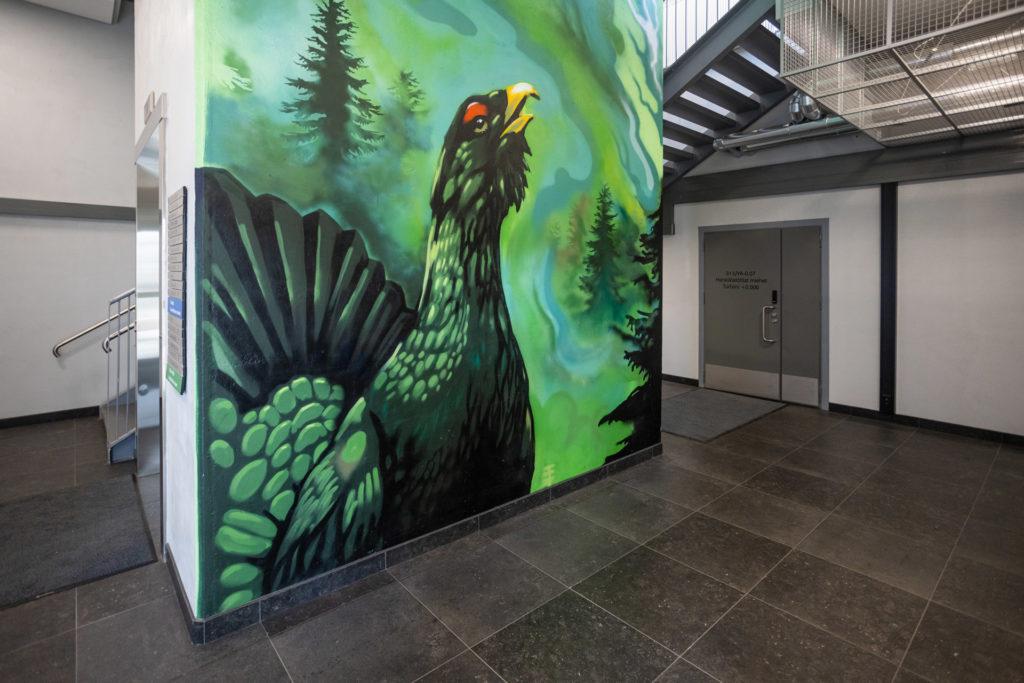 OEBIOn porrashuoneen seinämaalaus joka esittää metsoa